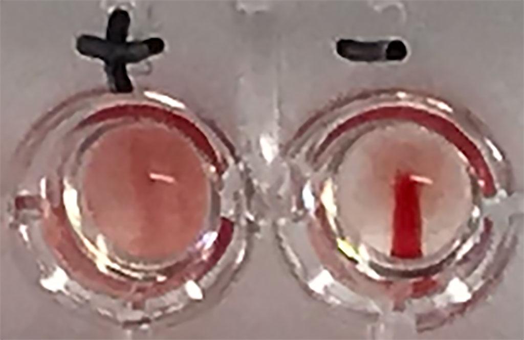 Imagen: Nueva prueba portátil detecta los anticuerpos para SARS-CoV-2 en personas que han dado positivo para COVID-19 (Fotografía cortesía de la Universidad de Oxford)