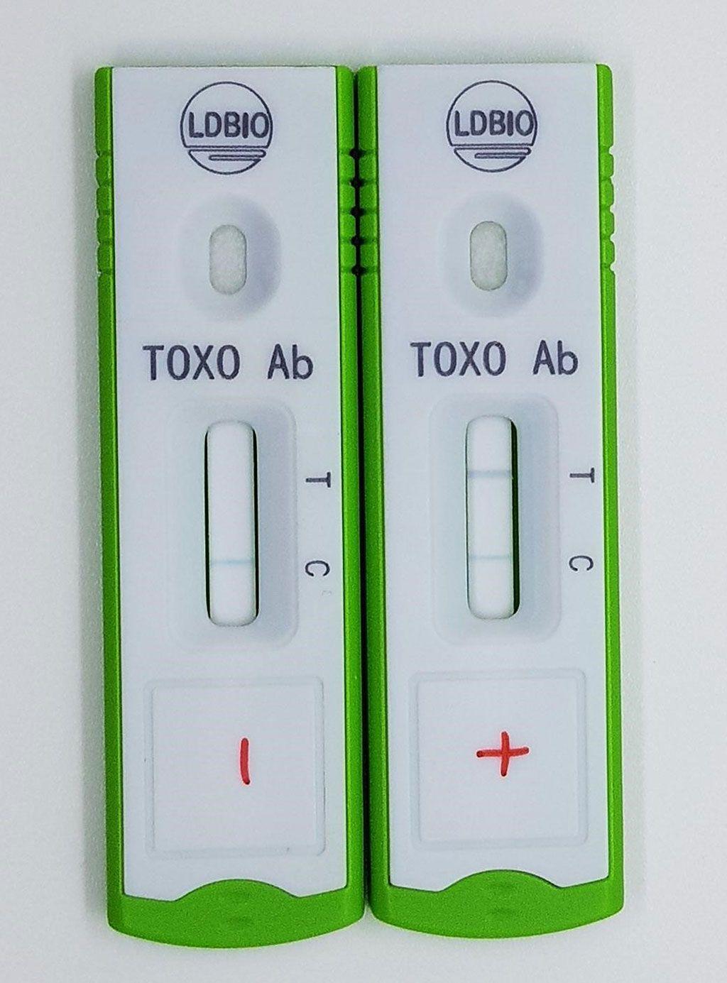 Imagen: TOXOPLASMA ICT IgG-IgM es una prueba rápida cualitativa unitaria basada en tecnología de cromatografía inmune (flujo lateral), permitiendo la detección simultánea de los anticuerpos antitoxoplasma de clase IgG e IgM en suero humano (Fotografía cortesía de LDBIO DIAGNOSTICS)