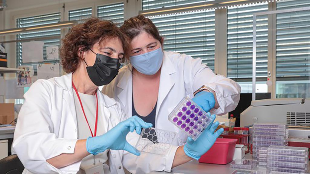 Imagen: Nueva prueba de sangre altamente sensible mide con exactitud la inmunidad contra el SARS-CoV-2 (Fotografía cortesía de EPFL / Alain Herzog 2021)