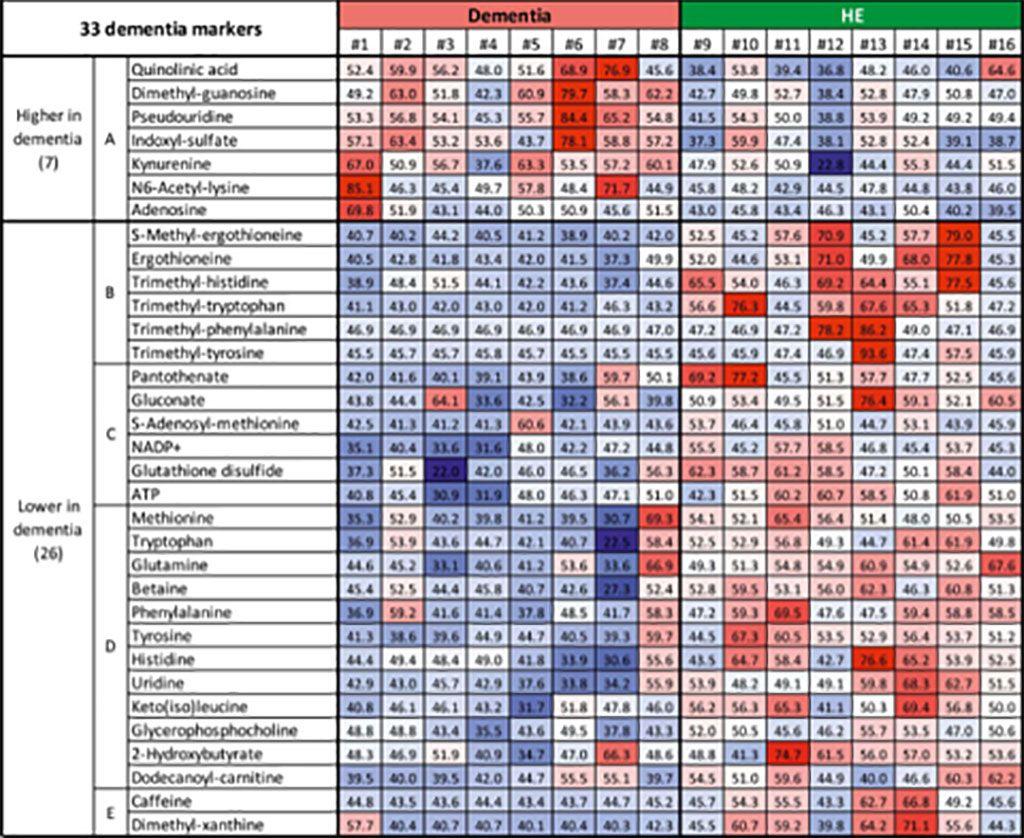 Imagen: Un mapa de calor, donde el rojo muestra niveles altos de un compuesto y el azul muestra niveles bajos de un compuesto, revela el vínculo entre ciertos metabolitos y la demencia. Los compuestos del subgrupo A fueron típicamente más altos en pacientes con demencia y más bajos en personas mayores sanas. Los compuestos del subgrupo B-E mostraron el efecto contrario (Fotografía cortesía del Instituto de Ciencia y Tecnología de Okinawa)