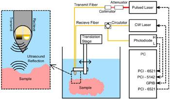 Imagen: Una configuración del sistema con la cual se muestra la generación de ultrasonidos a la izquierda y la fibra de detección ubicada en la carcasa metálica tubular (Fotografía cortesía de OSA Publishing).