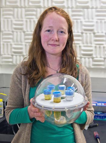 Imagen: La ingeniera del NIST, Katy Keenan, sostiene el nuevo fantoma (Fotografía cortesía del NIST).