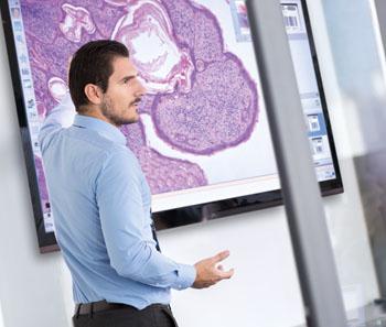Imagen: Educación usando la patología digital (Fotografía cortesía de Royal Philips).