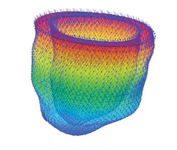 Imagen: Un modelo a escala múltiple del corazón humano, hecho mediante resonancia magnética (Fotografía cortesía de la Universidad de Glasgow).