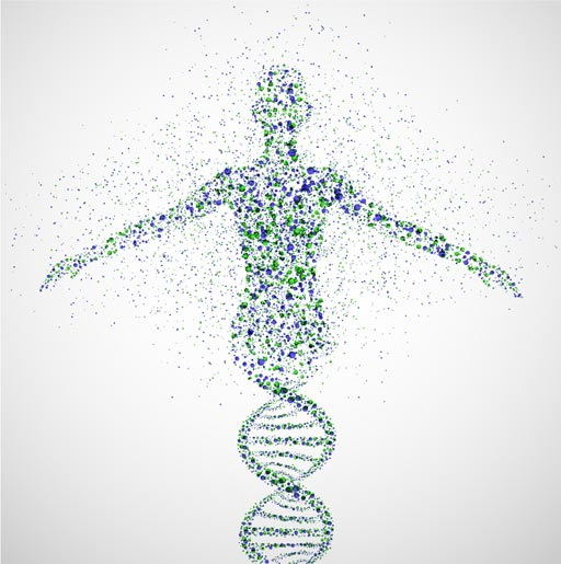 Imagen: Un nuevo estudio sugiere que los datos genómicos personales promueven una atención médica informada (Fotografía cortesía de Shutterstock).