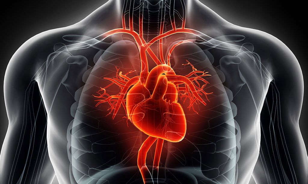 Imagen: La RMC temprana puede ayudar a identificar corazones rotos (Fotografía cortesía de Getty Images)