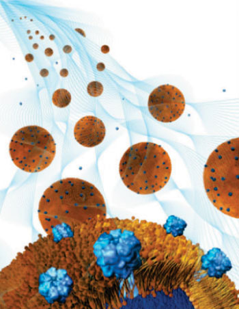 Image: Nanosponge-hydrogel treats local bacterial infections (Image: courtesy of Weiwei Gao/UCSD).