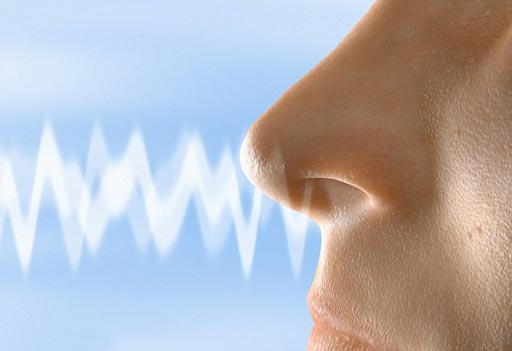 Image: Research shows olfactory loss is linked to a higher mortality risk (Photo courtesy of Getty Images).