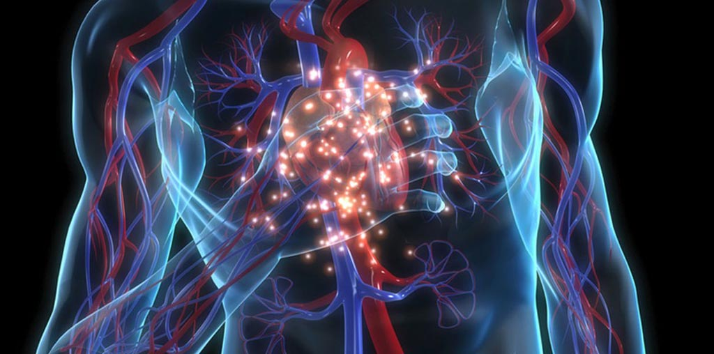 Image: A new study suggests cardiac calcium is predictive of cardiovascular events (Photo courtesy of iStock).