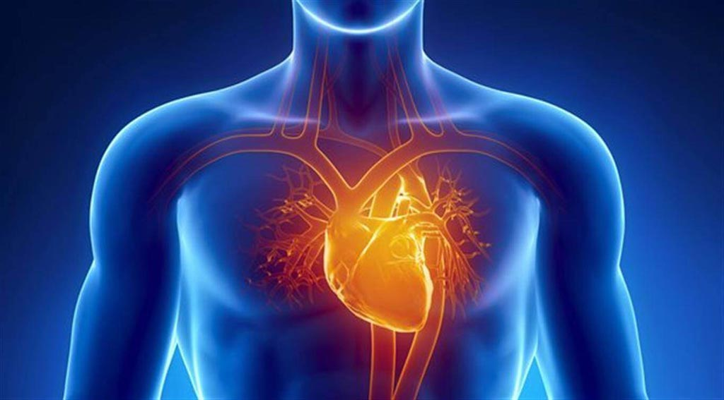 Image: A new study shows resynchronization therapy combined with defibrillation can reduce cardiac events (Photo courtesy of Getty Images).