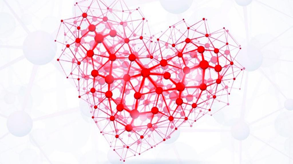 Image: A new study suggests nitric oxide can help cardiac drugs improve heart function (Photo courtesy of Shutterstock).