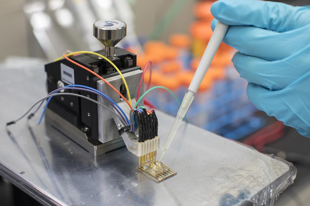 Image: A semiconducting plastic sensor can monitor metabolites directly (Photo courtesy of KAUST).