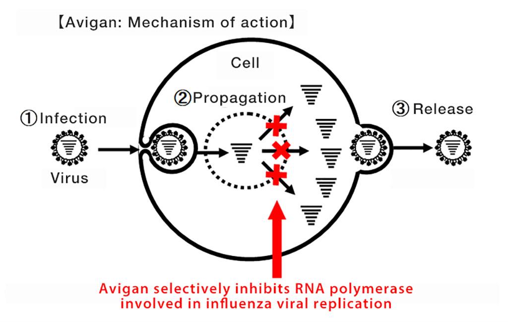 Image: Avigan: Mechanism of action (Photo courtesy of FUJIFILM Corporation)