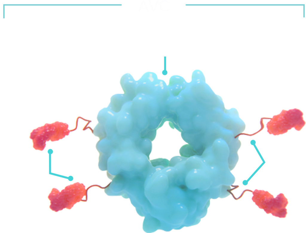 Image: Cidara's Cloudbreak antiviral platform is a fundamentally new approach to treating and preventing viral infections (Photo courtesy of Cidara Therapeutics, Inc.)