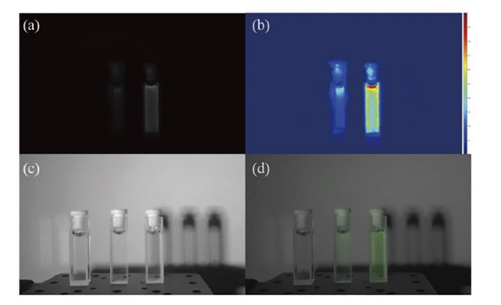 Image: Different concentrations of indocyanine green under NIR (a) visible light (b), and a fusion image (d) (Photo courtesy of Chenyoung Shi/ CAS)