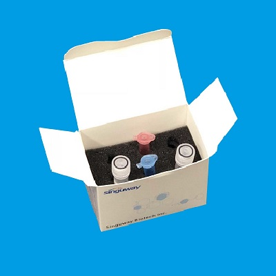 NUCLEIC ACID DETECTION KIT FOR COVID-19