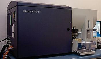 Флуоресцентный клеточный сортер BD FACSAria III (фото любезно предоставлено компанией BD).