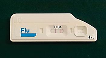 Image: The rapid influenza detection test Quick Navi-Flu (Photo courtesy of Otsuka Pharmaceutical).