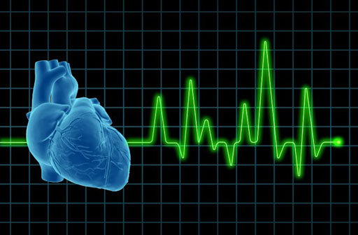 Image: The SimplECG is designed to capture and transmit diagnostic data via everyday garments in an effort to monitor heart behavior and help prevent cardiac-related events (Photo courtesy of Shutterstock).