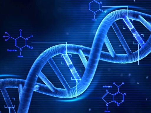 Image: The growing molecular diagnostics market is worth of almost USD 7 billion, according to recent findings (Photo courtesy of iStock).