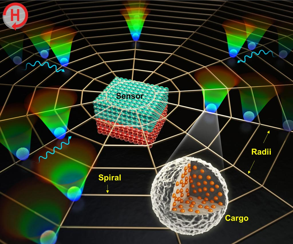 Image: A diagram of a biosensor platform using magnetic patterns resembling a spider web (Photo courtesy of DGIST).