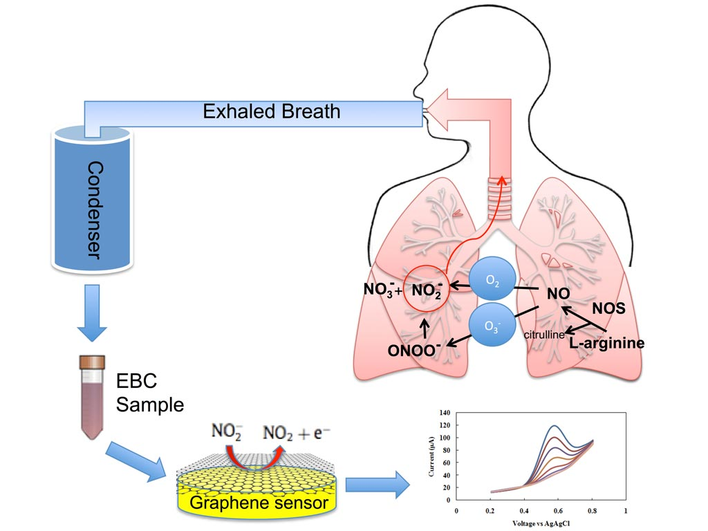 Image: Exhaled breath condensate is rapidly analyzed by a new graphene-based nanoelectronic sensor that detects nitrite, a key inflammatory marker in the inner lining of the respiratory airway (Photo courtesy of Azam Gholizadeh, Rutgers University).