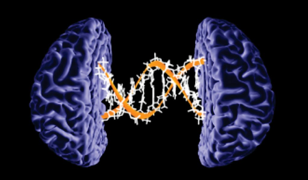 Image: A new large-scale genetic study provides a better understanding of Alzheimer\'s disease by uncovering two new risk genes (Photo courtesy of the American Academy of Neurology).