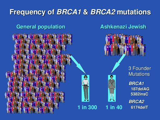 Image: A new study suggests that Ashkenazi Jewish women can benefit from genetic testing for all known breast cancer genes (Photo courtesy of the University of Washington).