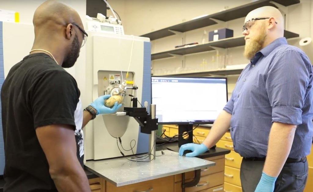 В исследовании использована плазма тлеющего разряда при атмосферном давлении для зондирования образцов на элементарные и молекулярные частицы, что может привести к созданию удобного масс-спектрометрического анализа с широкими возможностями (фото любезно предоставлено Политехническим институтом Ренсселера).