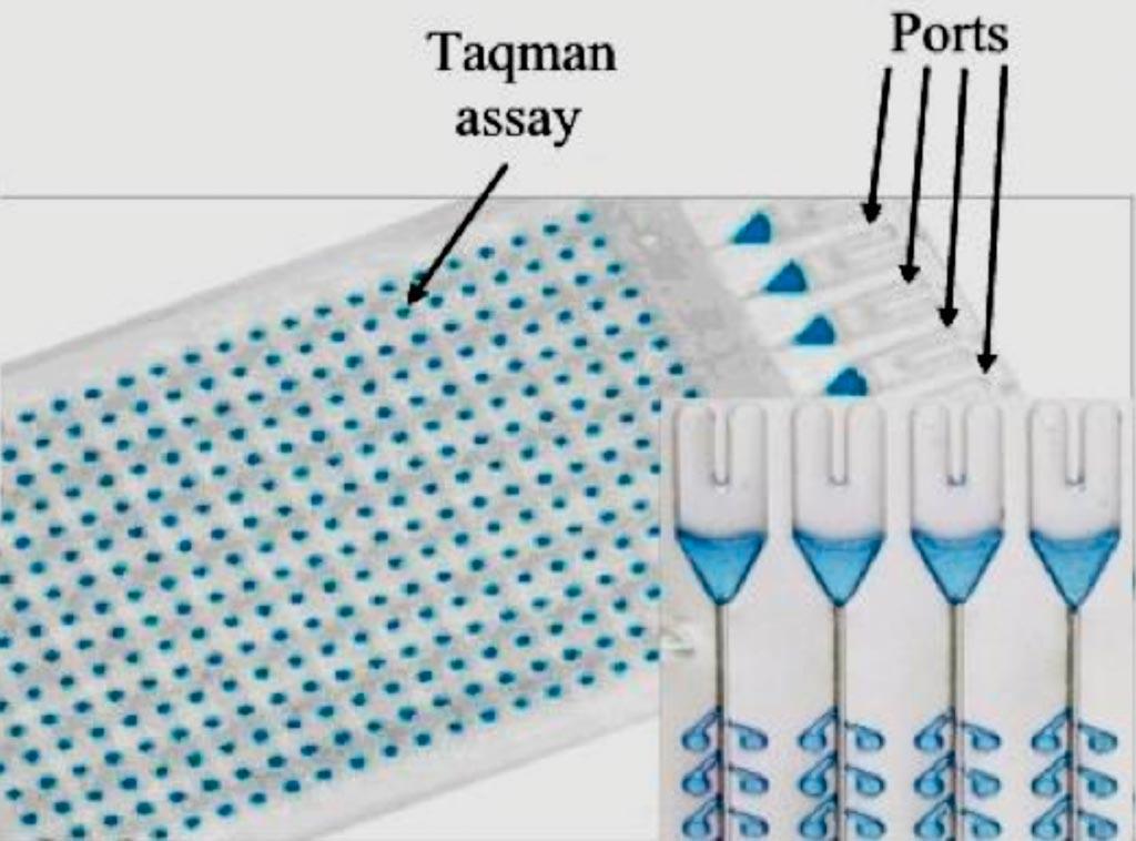 """图片:TaqMan低密度阵列卡示例;每孔含一个特定miRNA正向引物,一个特定的miRNA TaqMan探针,一个反向引物""""尾巴""""(照片由Dana-Farber Cancer Institute提供)。"""