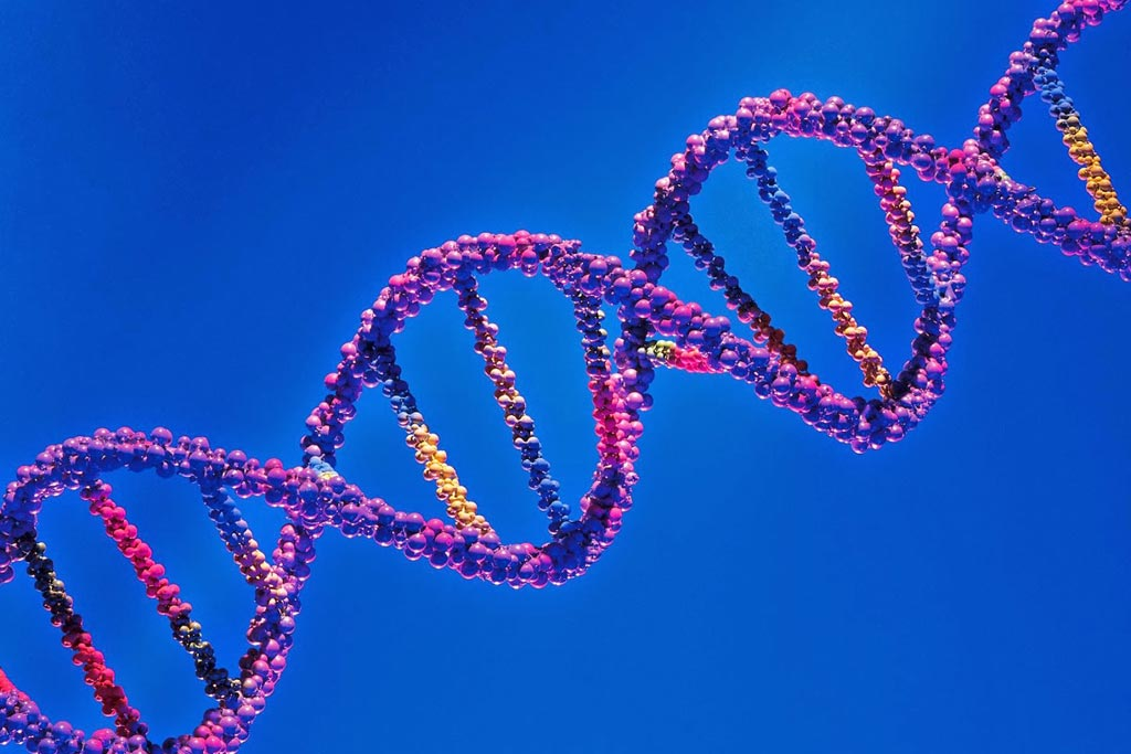 Image: The new assay is intended to solve the problem of false positive results that are frequently obtained when evaluating chemical compounds and potential drugs for their potential to cause genetic damage (Photo courtesy of Shutterstock).