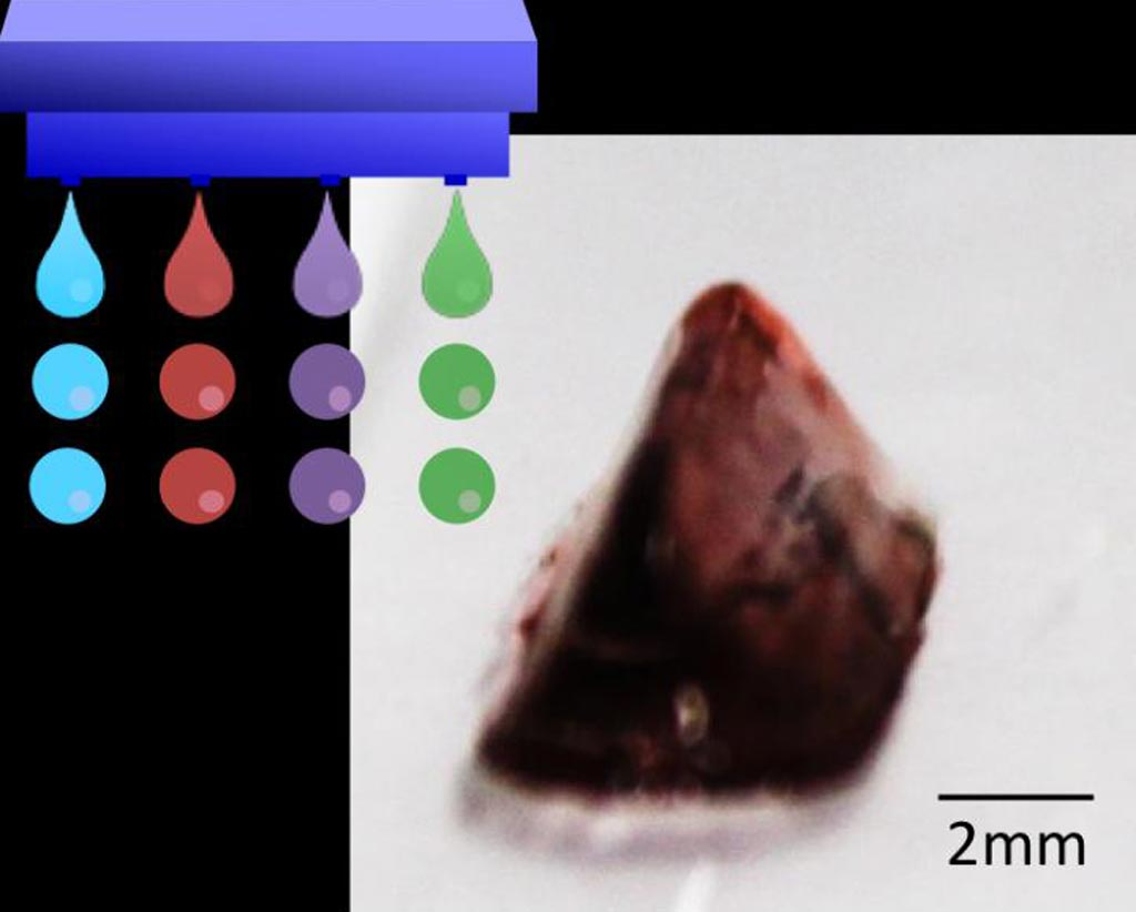 Image: A three-dimensional hydrogel construct fabricated through drop-on-drop multi-material bio-printing (Photo courtesy of Osaka University).