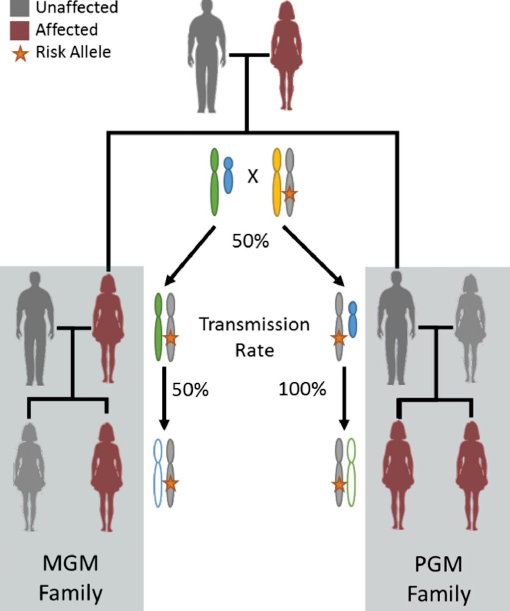 Image: Diagrams for X-linked inheritance when cancer status is specific to women (all carrier men are effectively disease censored). Two family patterns with a pair of first-degree affected women are the maternal grandmother (MGM) family and the paternal grandmother (PGM) family (Photo courtesy of Roswell Park Cancer Institute).
