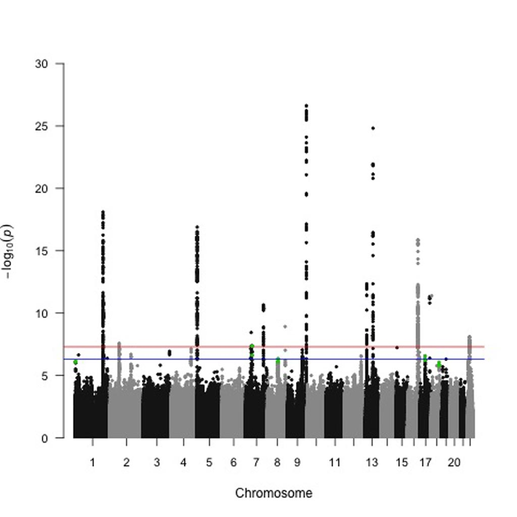 Image: A Manhattan plot of the study results show taller peaks that denote genetic loci most significantly associated with pancreatic cancer risk (Photo courtesy of Dr. Alison Klein, Johns Hopkins University).
