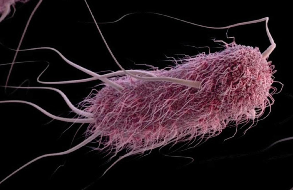 Image: A computer-generated image of E. coli (Photo courtesy of Alissa Eckert and Jennifer Oosthuizen / CDC).