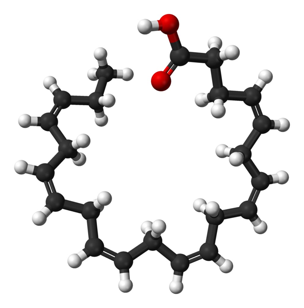Image: A ball-and-stick model of the docosahexaenoic acid (DHA) molecule. DHA is an omega-3 fatty acid that is a primary structural component of the human brain, cerebral cortex, skin, and retina (Photo courtesy of Wikimedia Commons).