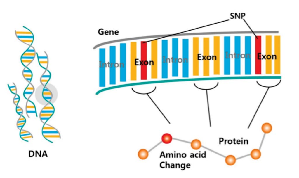 Image: A diagram of whole-exome sequencing to identify genetic variants (Photo courtesy of NGXBIO).