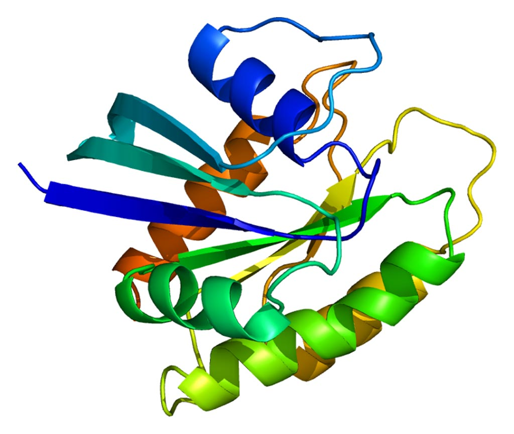 Image: The structure of the NRAS protein (Photo courtesy of Wikimedia Commons).