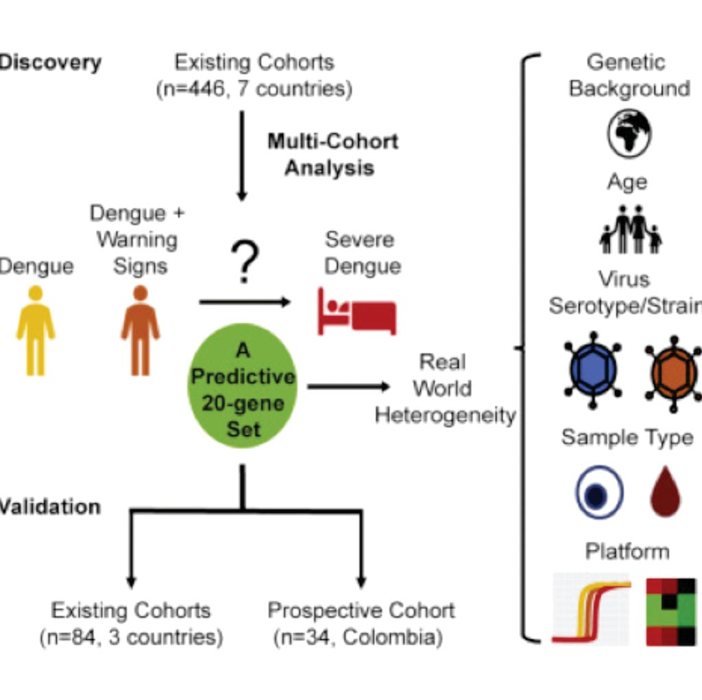 Image: A diagram of the 20-Gene Set Predictive of Progression to Severe Dengue study (Photo courtesy of Stanford University School of Medicine).