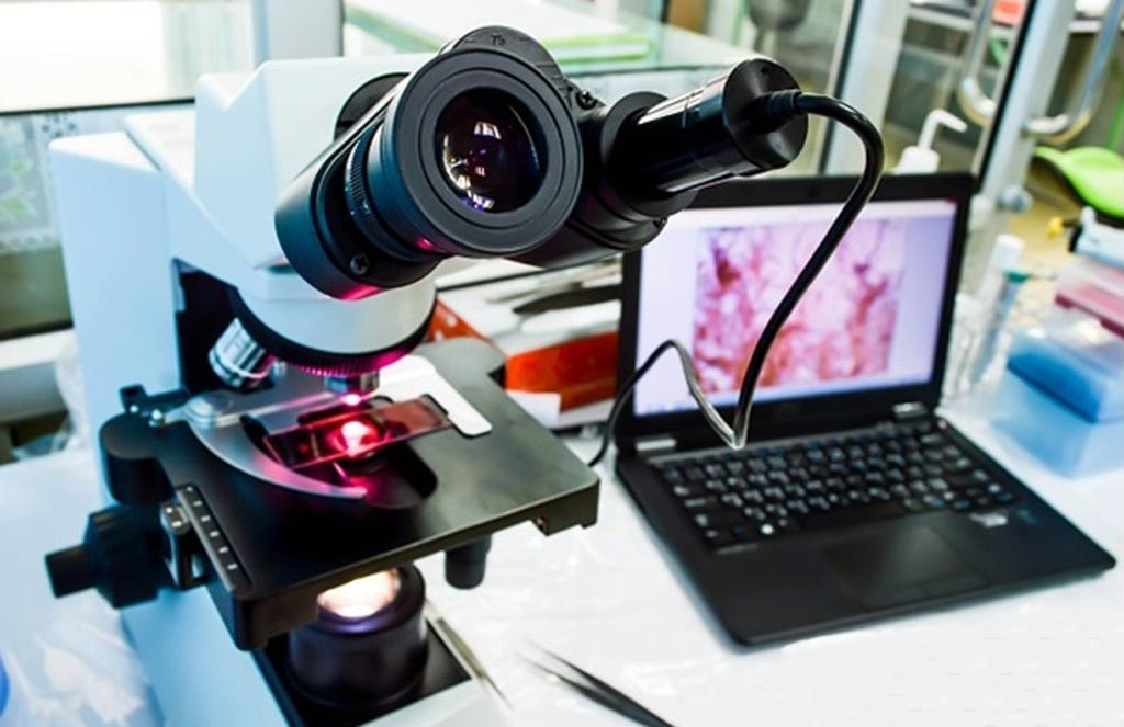 Image: The global digital pathology market is projected to reach USD 600 million by 2022 (Photo courtesy of Shutterstock).