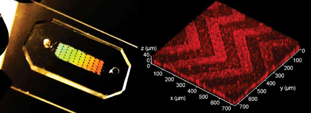Image: The three-dimensional (3D) herringbone nanopatterned microfluidic chip that detects cancer faster (Photo courtesy of the University of Kansas).