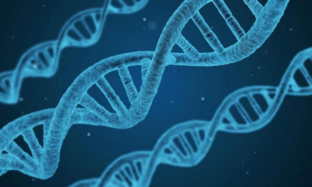 Image: A new study identified 76 new gene regions associated with sleep duration (Photo courtesy of CCO Public Domain).
