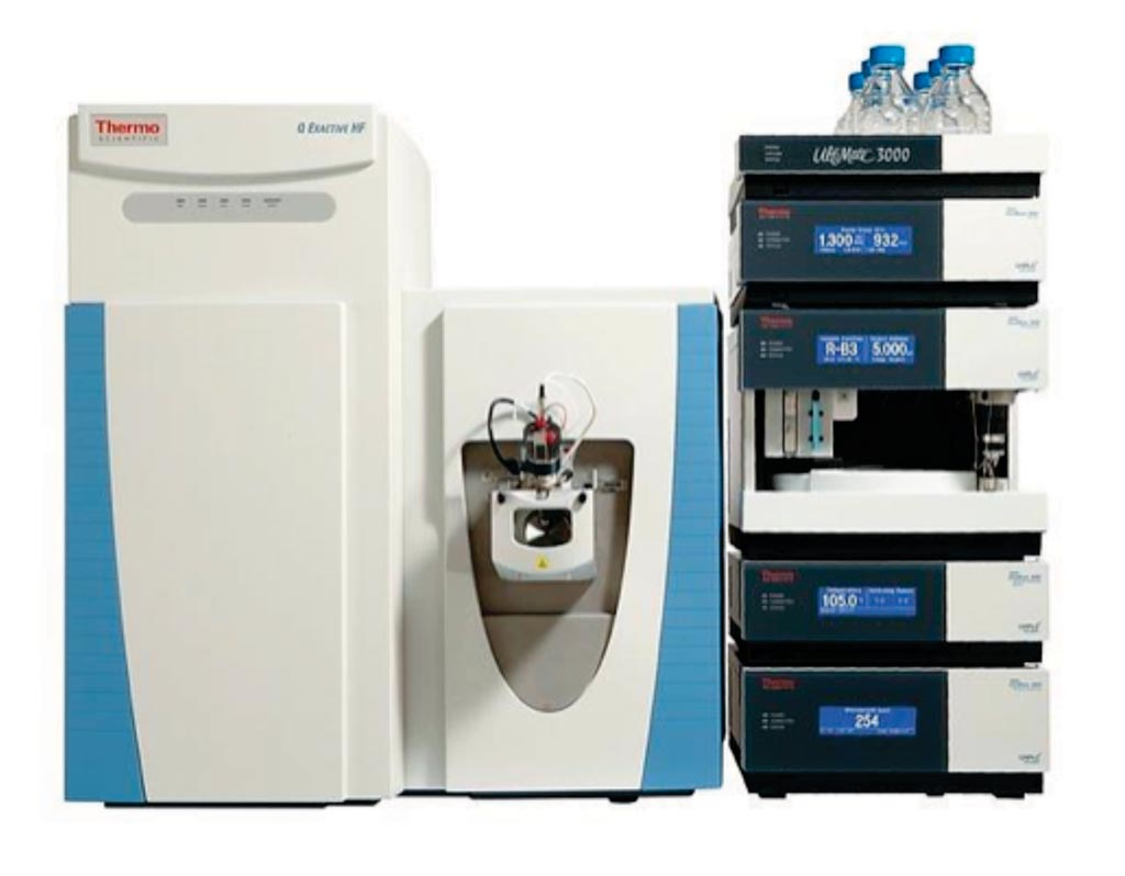 Image: Q-Exactive HF Hybrid Quadrupole-Orbitrap mass spectrometer coupled to a Dionex Ultimate 3000 RSLC Nano system (Photo courtesy of Thermo Fisher Scientific).