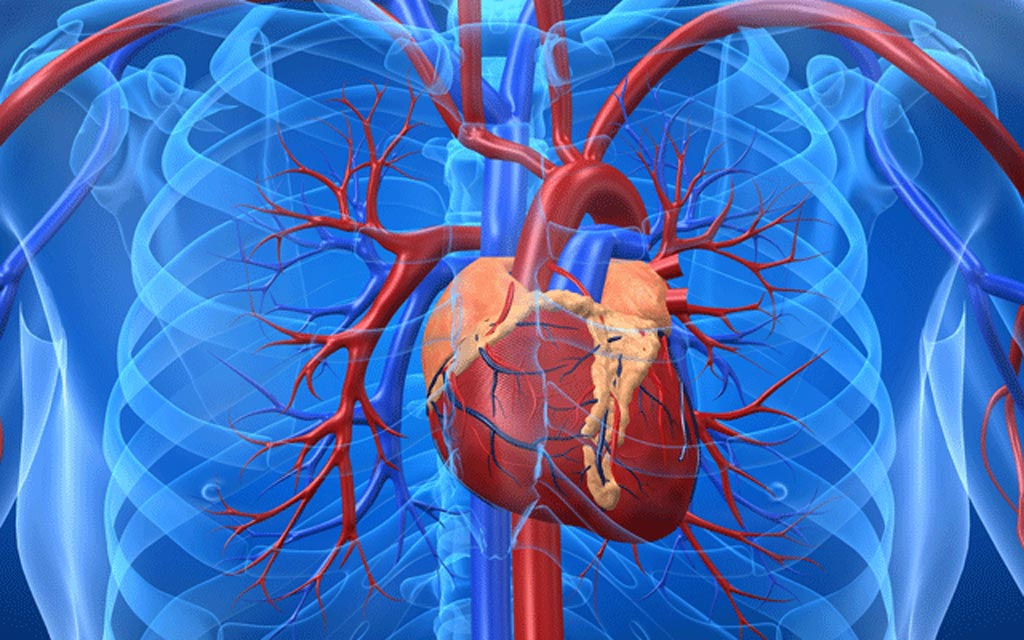 A new blood test promises near instant diagnosis of a heart attack using a newly discovered protein biomarker (Photo courtesy of iStock).