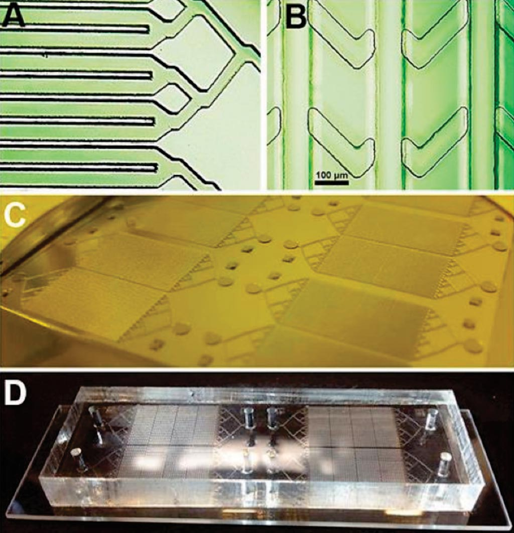 Image: (A and B) Photomicrographs of the layers of the device; (C) the mold ready for casting and (D) the chip mounted on a slide (Photo courtesy of San Diego State University).