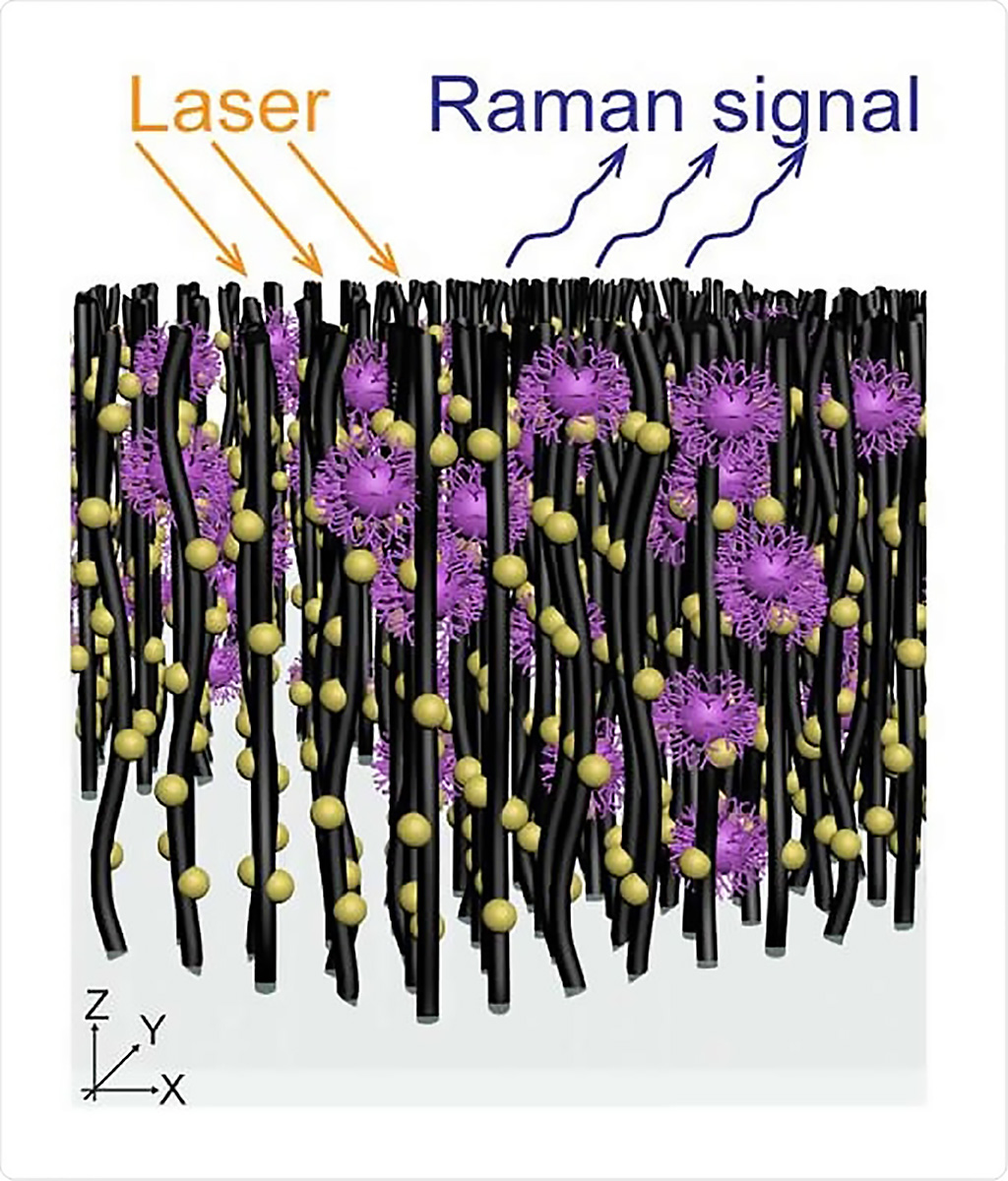 Image: Schematic of an array of nanotubes decorated with gold nanoparticles that capture virus molecules for in situ Raman spectroscopy for label-free optical virus identification (Photo courtesy of Professor Mauricio Terrones)