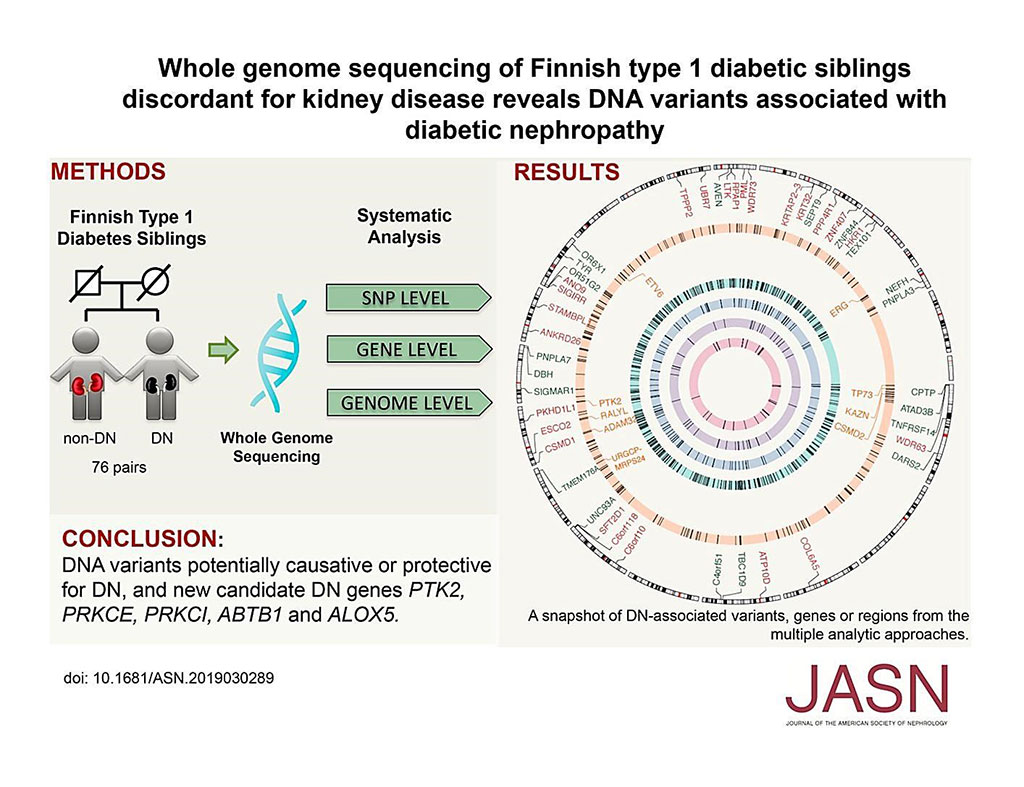 Image: Whole-Genome Sequencing of Finnish Type 1 Diabetic Siblings Discordant for Kidney Disease Reveals DNA Variants associated with Diabetic Nephropathy (Photo courtesy of Duke University).