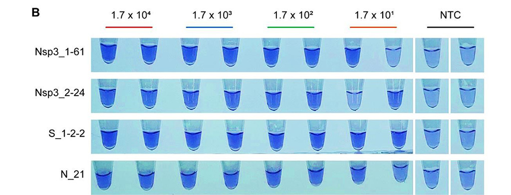 Image: Lauco crystal violet (LCV) colorimetric detection results of limit of detection (LoD) tests for the primer sets used for SARS-CoV-2 detection. 20U/reaction of reverse transcriptase were used (Photo courtesy of Korea Research Institute of Chemical Technology).