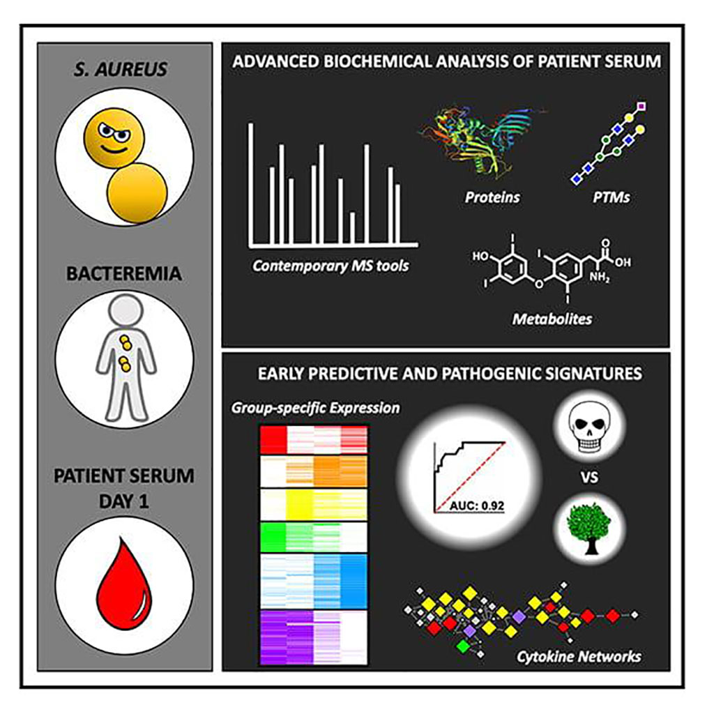 Image: Using advanced biochemical analysis of patient serum, researchers found signatures that help predict which patients are at highest risk of dying from S. aureus bacteremia, a blood infection (Photo courtesy of University of California, San Diego)