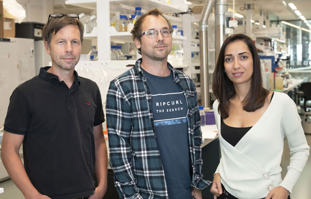 Image: Researchers at Karolinska Institutet have developed methods that completely circumvent the RNA-extraction procedure (Photo courtesy of Karolinska Institutet)